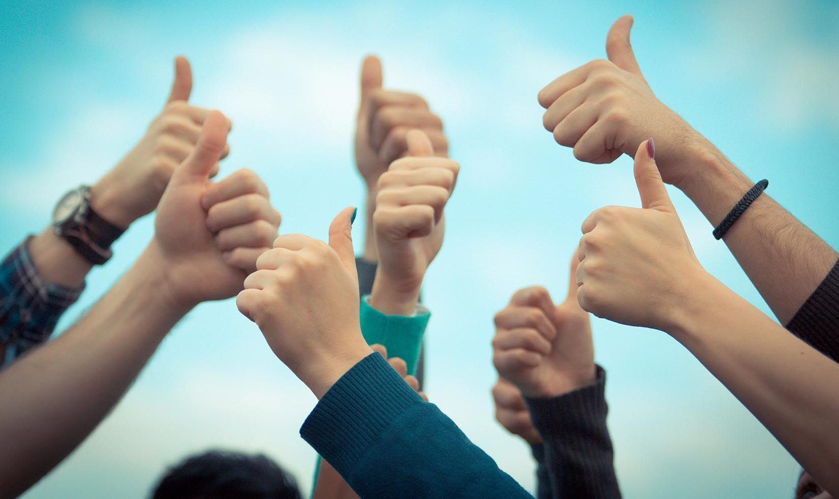 thumbs up migration news